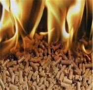 Biomass Fuel is using all timber waste and converting the waste into heating pellets